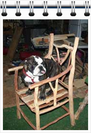 Max in Peggy's Chair - submitted by Clay, from Hickory Flat, MS