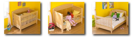 3-in-1 Bed for All Ages-Woodworking Plan